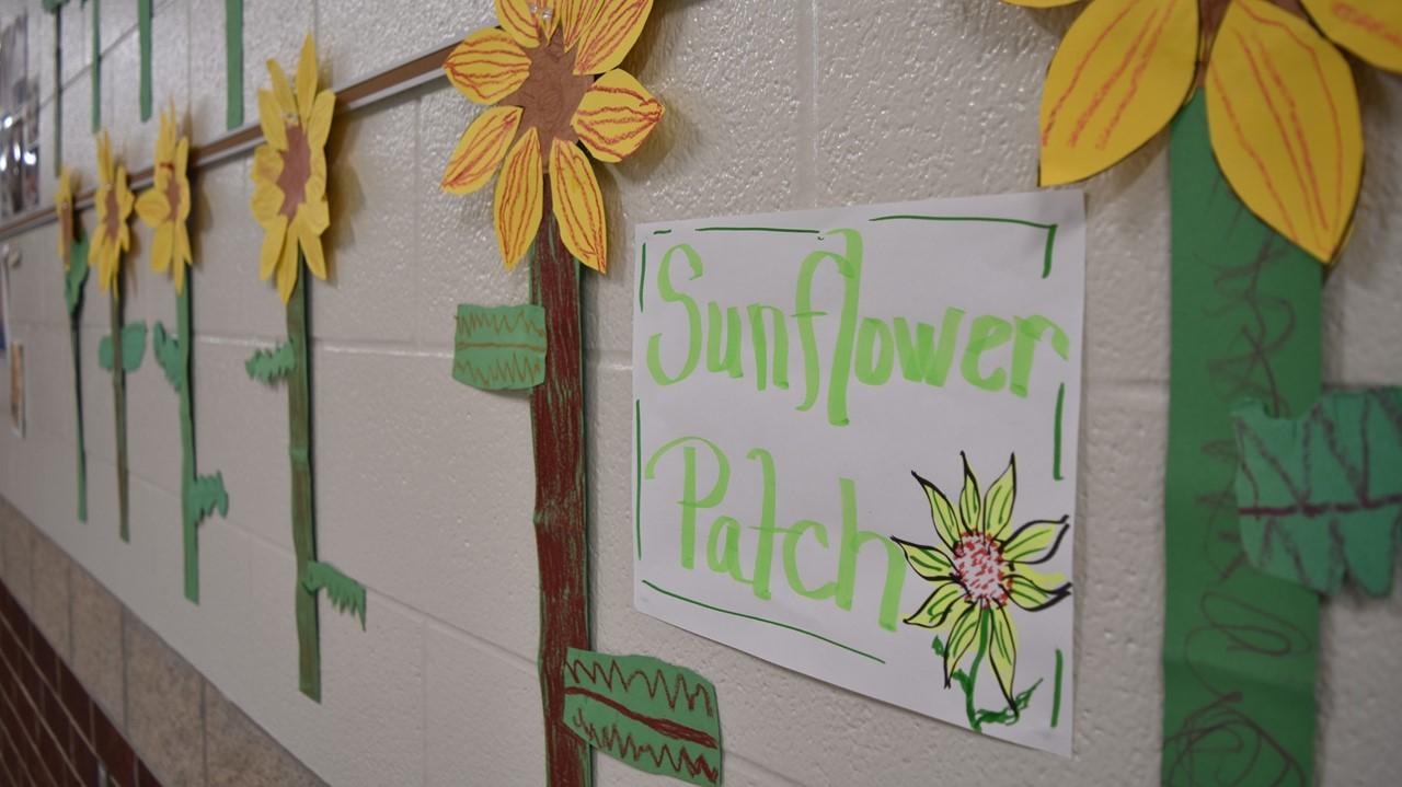 sunflower artwork by kindergarten students